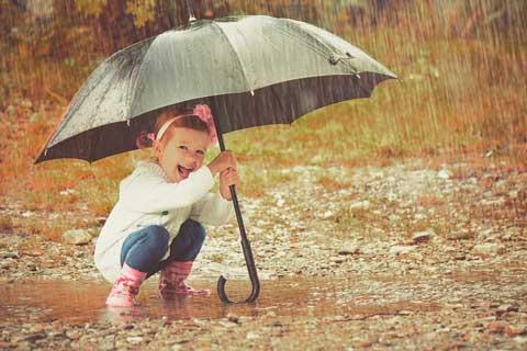 moestuinblog regen